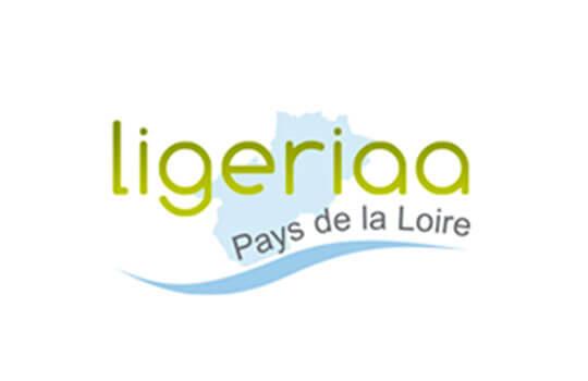 logo Ligeriaa