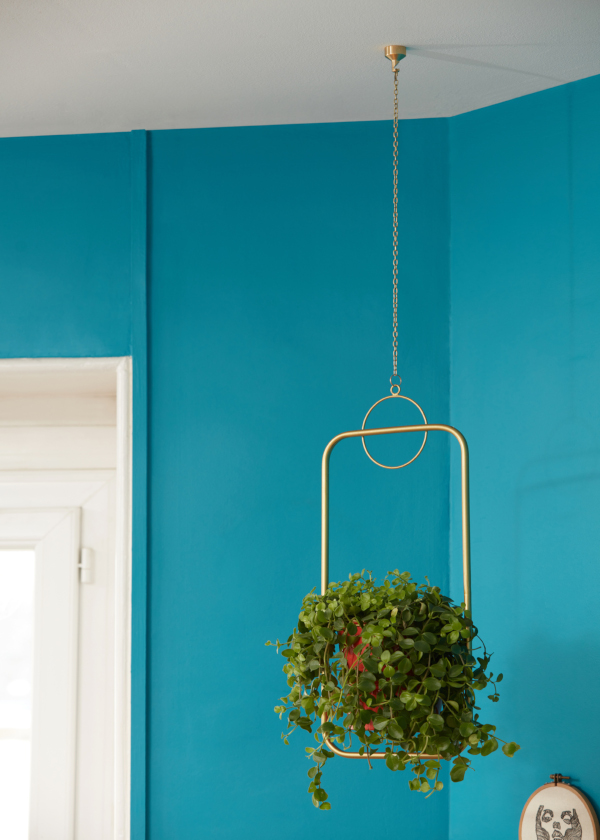 L'Attachante, innovative decorative fixings for the ceiling
